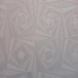 Duvar Kağıdı: ACE 501