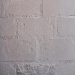 Duvar Kağıdı: 87002-3