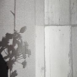 Duvar Kağıdı: 9649-1