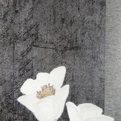 Duvar Kağıdı: 9642-2