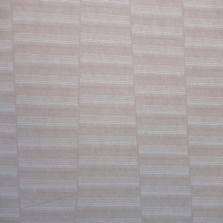 Duvar Kağıdı: ACE 1104