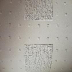 Duvar Kağıdı: 1882