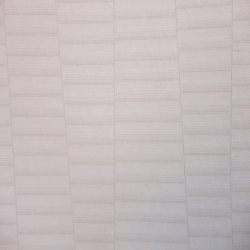 Duvar Kağıdı: ACE 1101