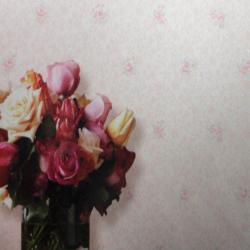 Duvar Kağıdı: 30116