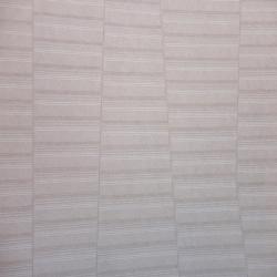 Duvar Kağıdı: ACE 1103
