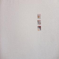 Duvar Kağıdı: 9690-1