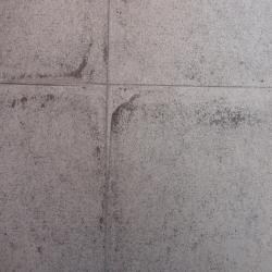 Duvar Kağıdı: SQU 402