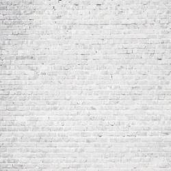 Duvar Kağıdı: DS5032