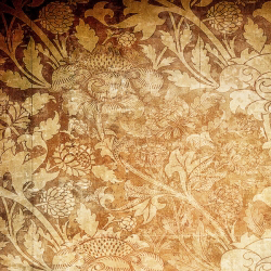 Duvar Kağıdı: DS5141
