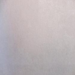 Duvar Kağıdı: BAC 301