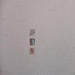 Duvar Kağıdı: 9690-2
