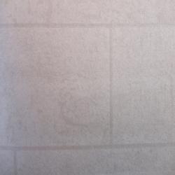 Duvar Kağıdı: BAC 401
