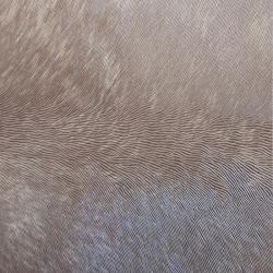 Duvar Kağıdı: N1249