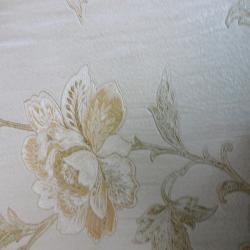 Duvar Kağıdı: M3921