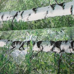 Duvar Kağıdı: 40017-1